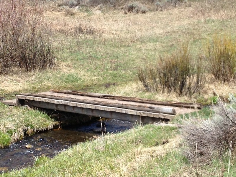 Overwhelm: A Bridge Toward Saner Living