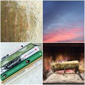 Winter's Good Graces {and Why to Keep Track}