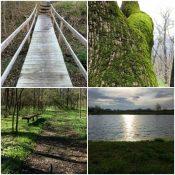 No: A Long Bridge to Yes