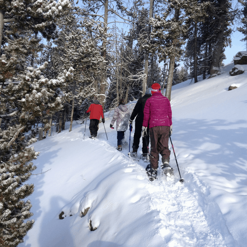 Snowshoeing: Observation Point