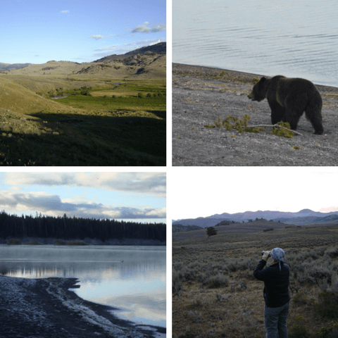 Yellowstone Tour   Five Entrances
