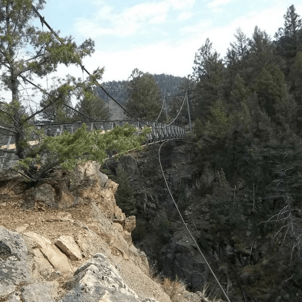 Do Not Feed the Animals: Hellroaring Suspension Bridge
