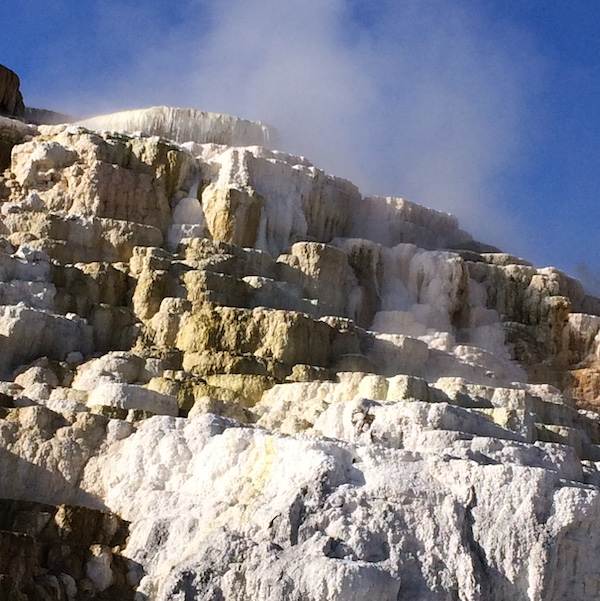 Your Yellowstone Guide: Mammoth Hot Springs