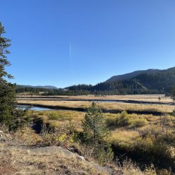 Yellowstone: Our Family's 5 Favorite  Picnic Areas